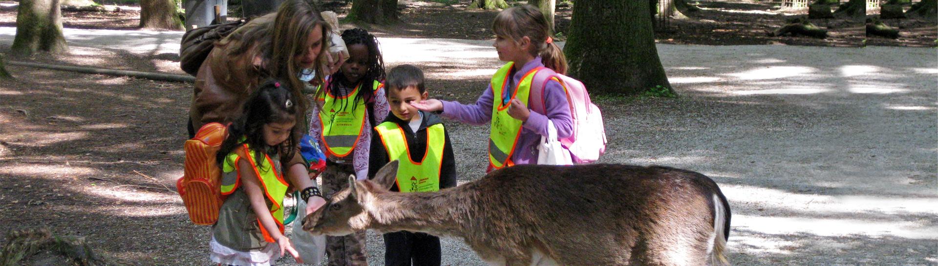 Hilfe für Kids - Ausflug in den Wildpark Poing